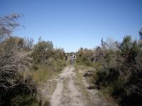 6_trail.jpg
